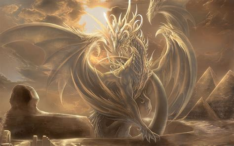 the book of light the book of dragons light dragon wattpad