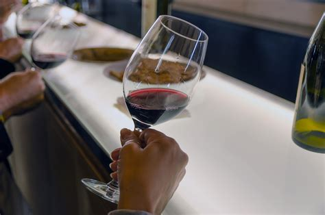 how to taste wine like a pro in 5 steps vino visit blog
