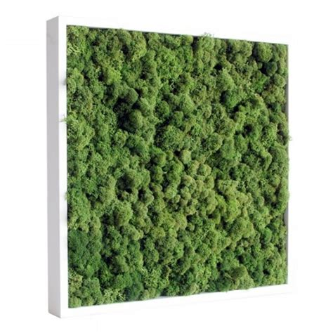 vegetal by nature when an artist is styling statues with tableau v 233 g 233 tal stabilis 233 lichen vert nature 40x40cm