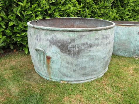 where to buy large planters buy a planter planters buy large plant pots 2017 new ideas