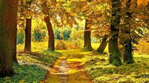 fall landscaping autumn landscape wallpapers wallpaper cave