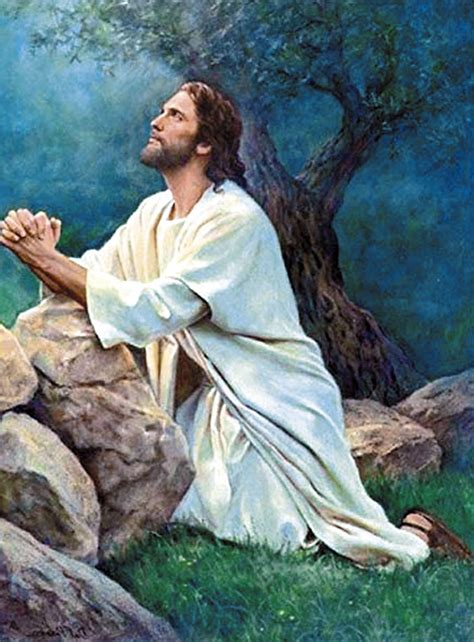 Imagenes Orando Con Jesus | homilia jesus orando semanario fides