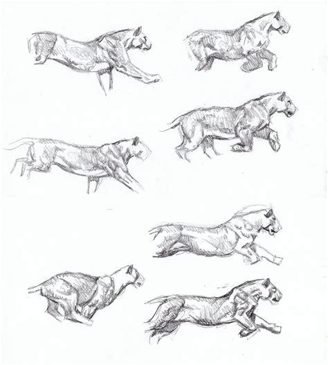 sketchbook cheetah sabertooth diaries 3 big cat sketches animal