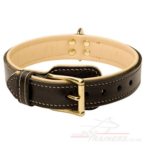 soft collars soft leather collar south russian shepherd collar nappa padded