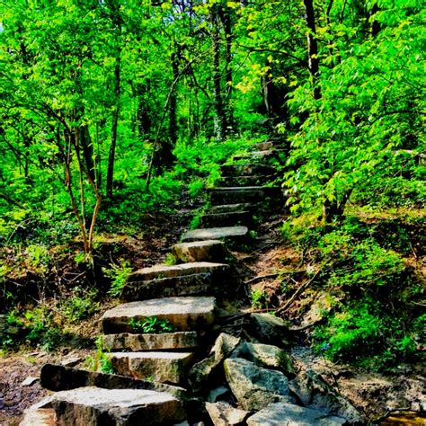 sugarcreek metropark hiking dayton pinterest