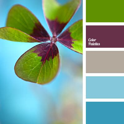 clover color colour of clover color palette ideas