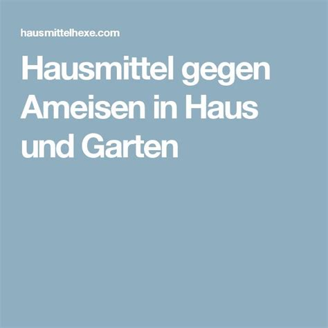 1000 Ideas About Ameisen Hausmittel On