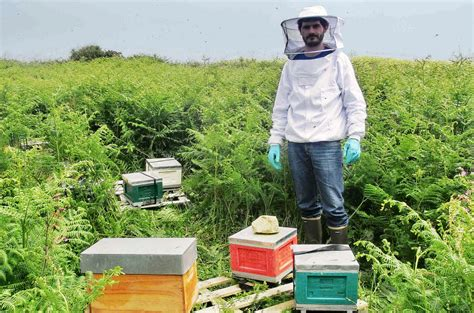 chambre d agriculture des c es d armor apiculture une bien mauvaise 233 e 2016 thinktanks fr