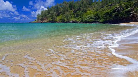 download wallpaper laut biru kertas dinding samudra laut biru langit awan pohon