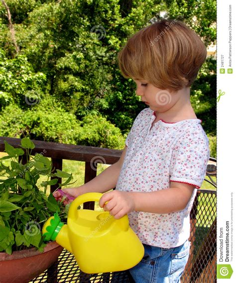 girl watering flowers girl watering flowers royalty free stock photography