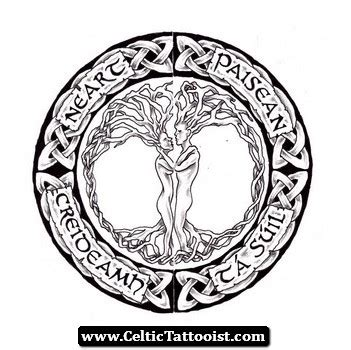 dragon celtic knot coloring pages printable dragon best