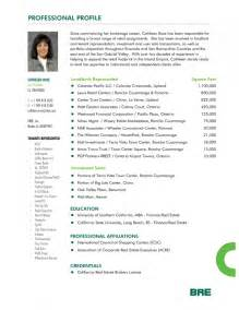 professional profile resume exles of professional profiles on resumes 38 images