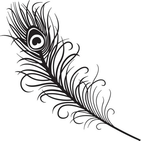 Peacock Feather Home Decor template