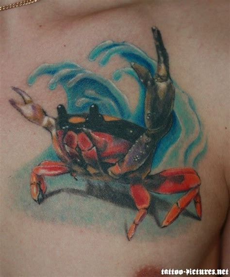 crab tattoo design best 25 crab ideas on cancer crab