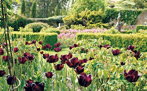 spring gardening dreaming of spring gardens mangotangerine