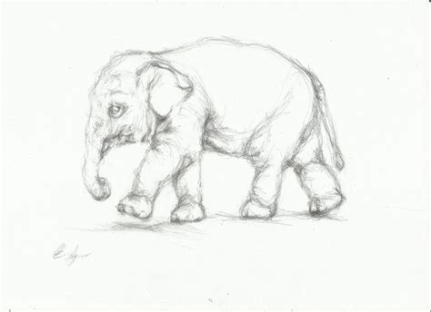 simple pencil drawing hd download easy pencil shading of elephants great drawing