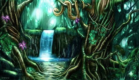 rainforest colors rainforest in color