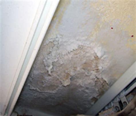 probleme d humidite appartement 3190 humidit 233 des murs comment l 233 viter