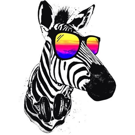 designs for pictures cool zebras clipart best