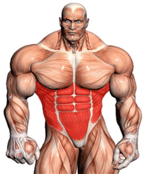 dumbbell swing bodybuilding double dumbbell swings for abs exercise video