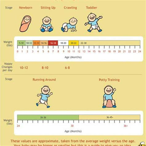 baby chart 24 baby weight charts template lab