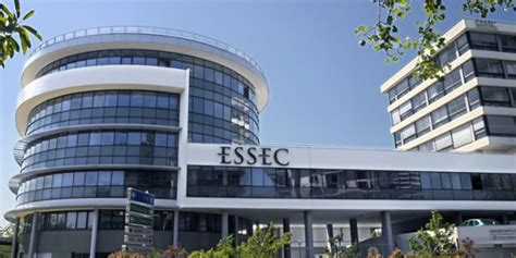 What To Ask Alumni Mba by Essec Master In Management Essays
