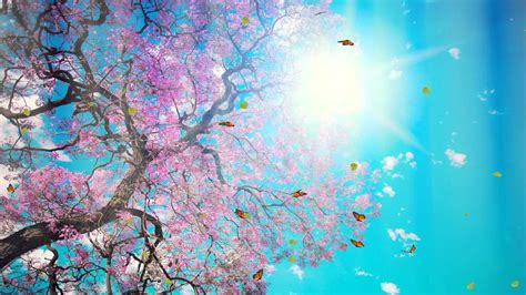 download fantastic butterfly screensaver animated fantastic nature animated wallpaper http www