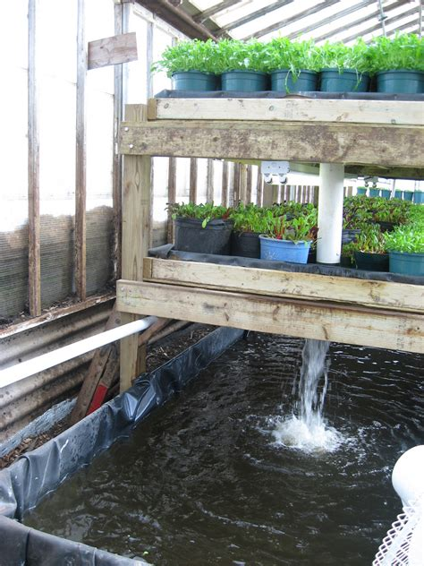 How To Build A Backyard Greenhouse Growing Power Vertical Aquaponics System Water Pumped Up