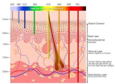 diode laser hair removal vancouver diode laser hair removal vancouver 28 images vancouver laser hair removal for nuage laser