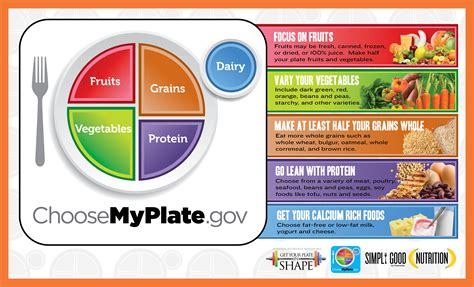 nutrition guides myplate usda and dr weils anti inflammatory food image gallery myplate diet