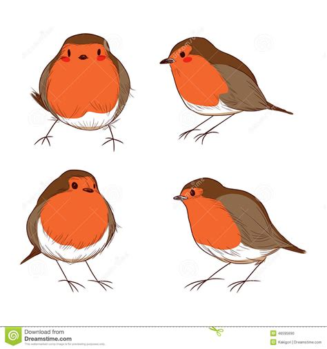what color is a robin robin bird color set stock vector image of