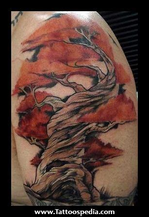 twisted tree tattoo designs tree tattoos tree illustration and butterfly tattoos on
