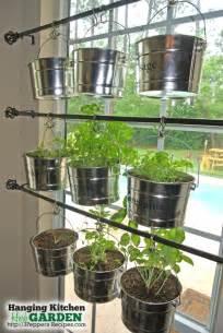 kitchen herb garden hanging kitchen herb garden raw ayurveda