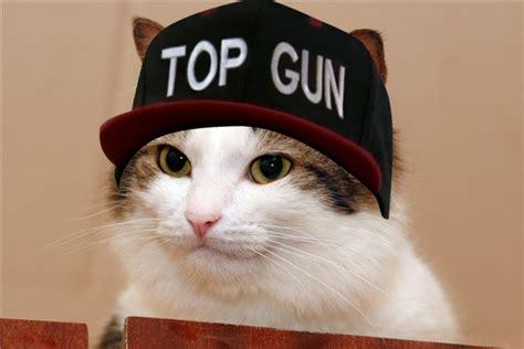 top gun hat meme memes