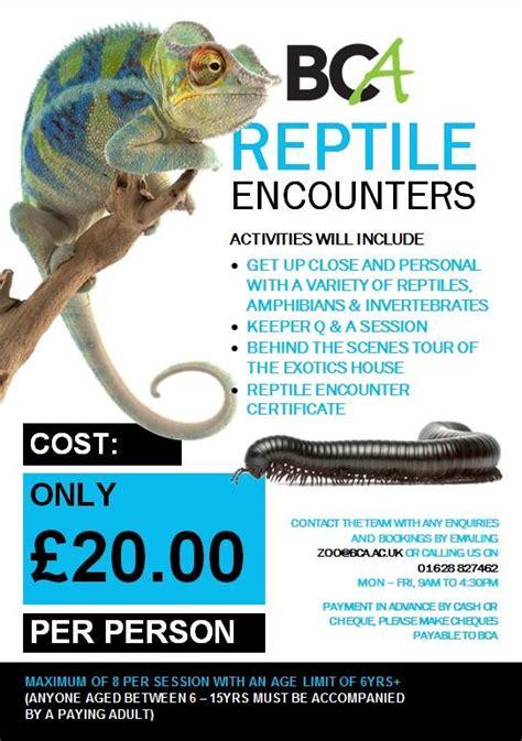 bca zoo day reptile encounters bca
