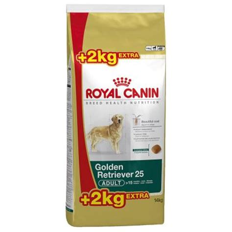 golden retriever diet plan royal canin golden retriever pienso para perros