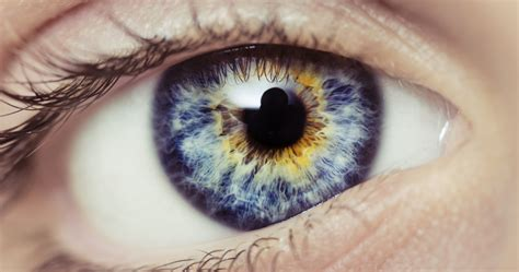 eye color meanings what s the meaning of your eye color playbuzz