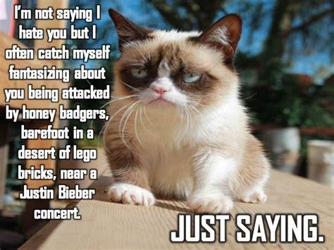 Grumpy Cat Funniest Memes - grumpy cat grumpy cat meme grumpy cat quotes funny