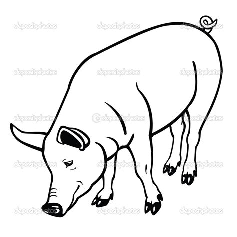pig clipart black and white clipart pig black and white www imgkid the image