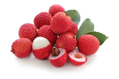kumpulan nama dan gambar buah buahan ngagambar