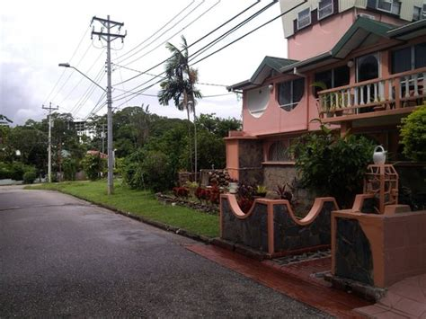 alicia house piscina picture of alicia s guest house port of spain tripadvisor
