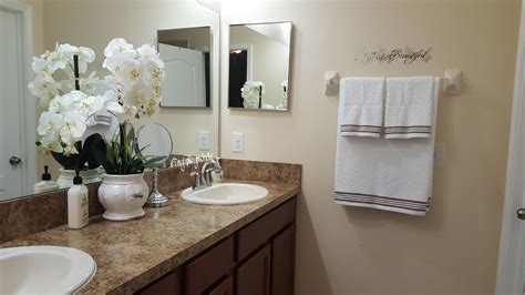 Master Bathroom Decor Ideas Master Bathroom Decor And Organization