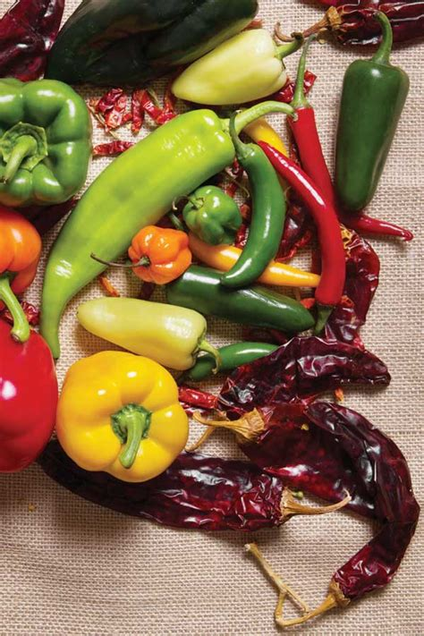 types of garden peppers pepper varieties garden grit magazine