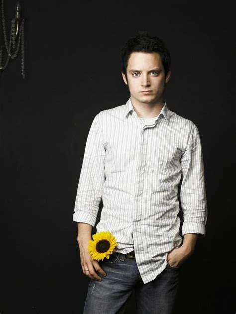 elijah wood cake 28 best images about middle earth sunflowers on pinterest