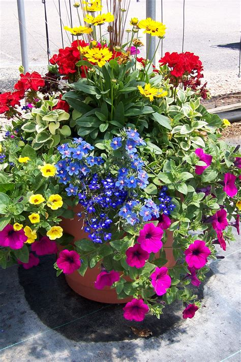 gulley s custom container gardens explore gulley greenhous flickr photo sharing