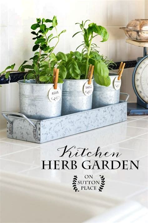 kitchen herb planter indoor herb planter eatwell101 kitchen herb garden herbs herbs garden and gardens