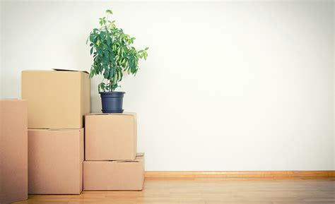 how to downsize your belongings how to downsize your stuff for a move huffpost