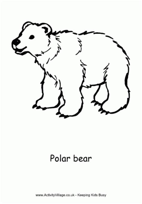 small bear coloring page get this polar bear coloring pages for toddlers dl53x