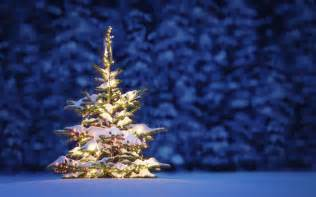 beautiful christmas tree wallpapers 9to5animations com