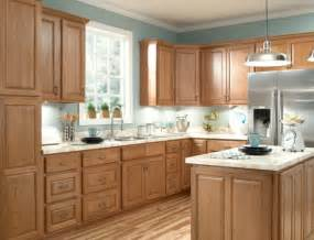 Kitchen Paint Colors With Honey Oak Cabinets by Nice Light Look Oak Cabinets Silver Appliances White